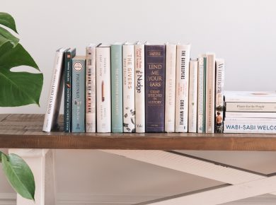A book sitting on top of a bookshelf
